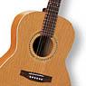 Коллекция Folk гитары A&L - 13 наименований стоимостью от 14480 до 60660 рублей.