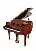PianoDisc PD42IVP + PDS250