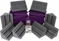AURALEX Project 2 - Purple