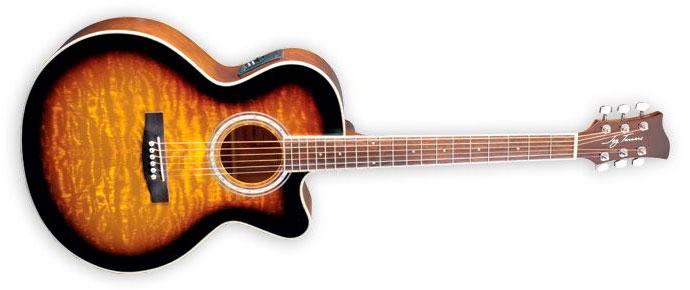 Jay Turser by Washburn JTA-424QCET-TSB Электроакустическая гитара MiniJumbo. На гитару установлен комплект струн D'Addario EXP. Встроенный предусилитель, тембр-блок, хроматический тюнер с дисплеем и четырехполосный эквалайзер