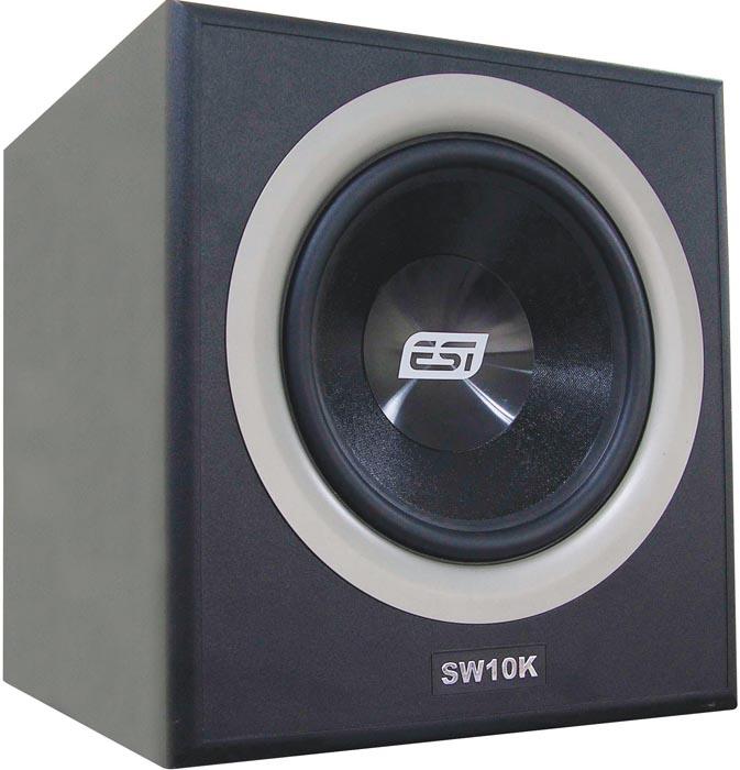 ESI SW10K