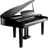 Коллекция Цифровые рояли KURZWEIL - 1 наименований стоимостью от 299590 до 299590 рублей