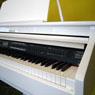 Коллекция Цифровые рояли ORLA - 6 наименований стоимостью от 155470 до 226700 рублей