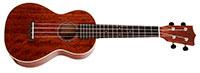 Sigma-Guitars SUM-2C