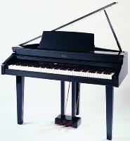 Galileo Concerto H.G.-Black