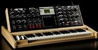 Moog Minimoog Voyager  Select series V-3